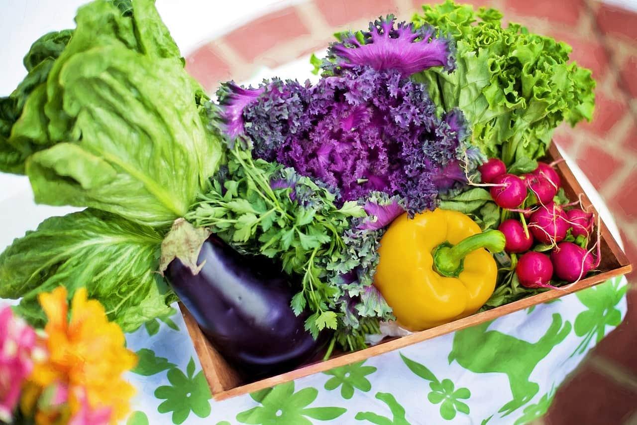 hortaliza, alimento alcalino